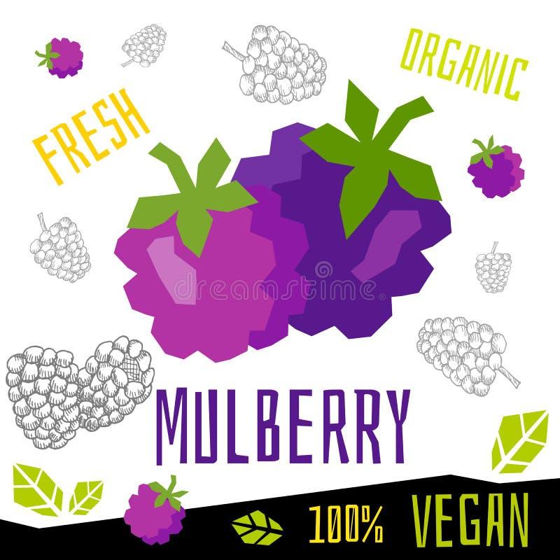 Иллюстрации свежей зрелой руки вектора еды vegan плодов ягод ягоды шелковицы органической вычерченные иллюстрация штока