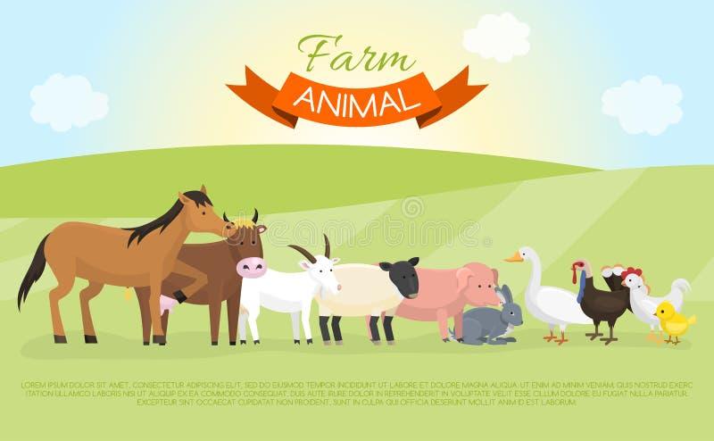 Иллюстрация вектора знамени домашних животных фермы Собрание милого домашнего животного Корова и лошадь мультфильма, свинья и гус иллюстрация штока