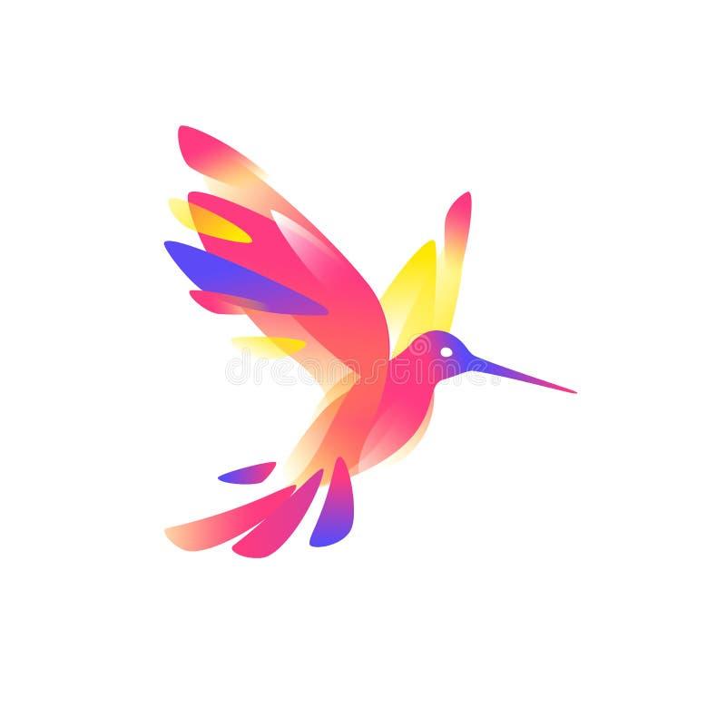 Иллюстрация розового colibri также вектор иллюстрации притяжки corel Изображение изолировано на белой предпосылке Птица колибри Л бесплатная иллюстрация
