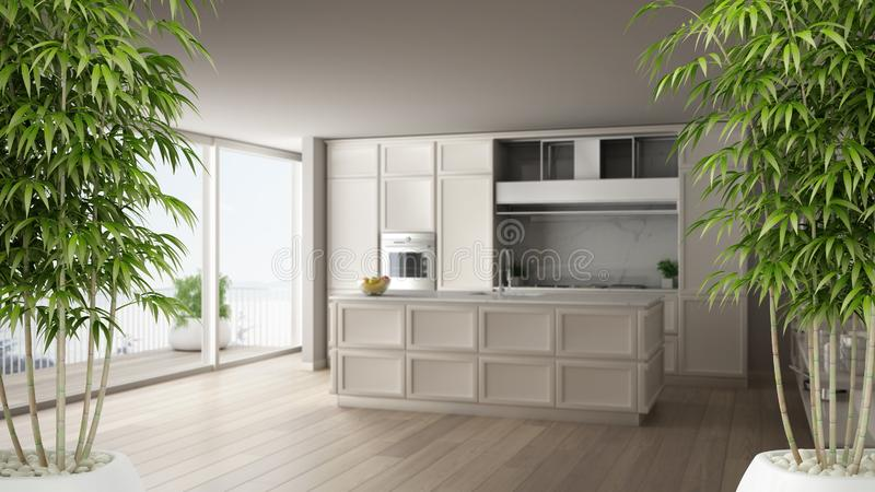 Интерьер с в горшке бамбуковым заводом, естественная конструктивная схема дзэна дизайна интерьера, классическая белая кухня в сов иллюстрация штока
