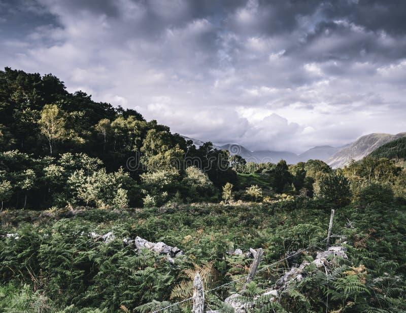 Идилличный ландшафт района озера, Cumbria, Великобритании стоковая фотография rf