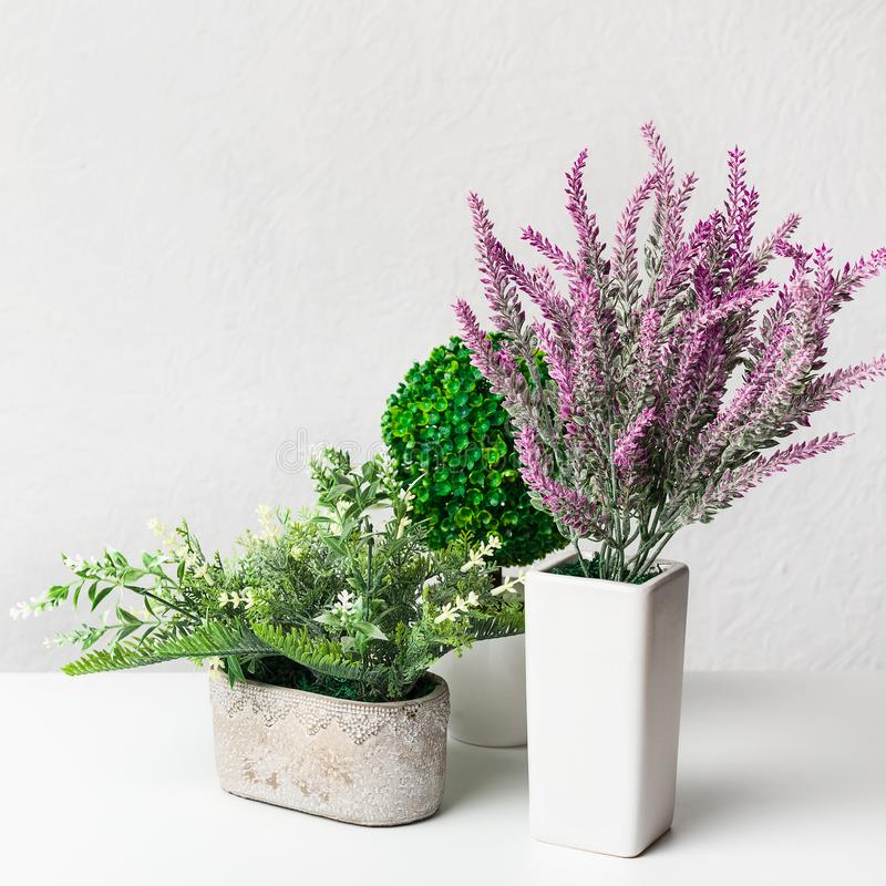 Искусственные лаванда и комнатные растения в баках над стеной стоковое изображение rf