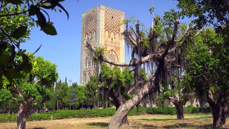 Исторический Medina города Рабата, Марокко стоковое фото rf