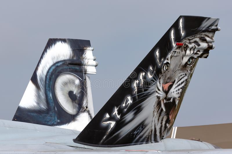 Кабель истребительных авиаций швейцарского шершня McDonnell Douglas F/A-18C военновоздушной силы multirole от авиаотряда 11 Staff стоковое фото