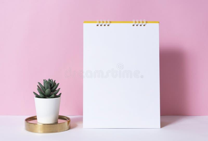 Календарь бумаги модель-макета спиральный с кактусом на розовой предпосылке стоковая фотография rf