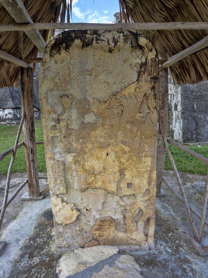 Каменные артефакты города нации Майя самого значительного майяского парка Tikal, Гватемалы стоковые фото