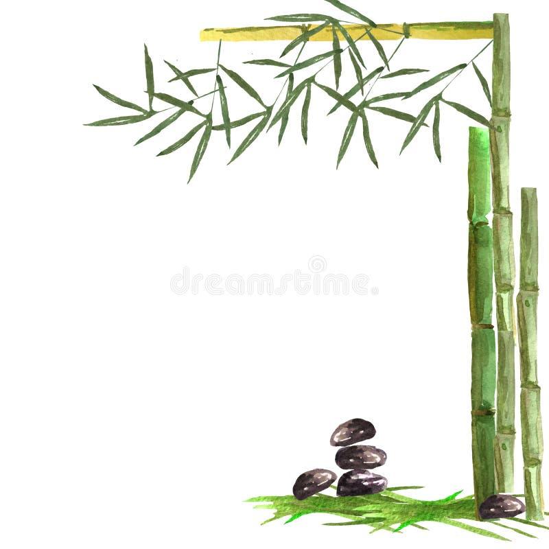 Картина акварели с бамбуковыми ветвями, отливками и камнями на белой предпосылке Для дизайна карт, визитные карточки, иллюстрация штока