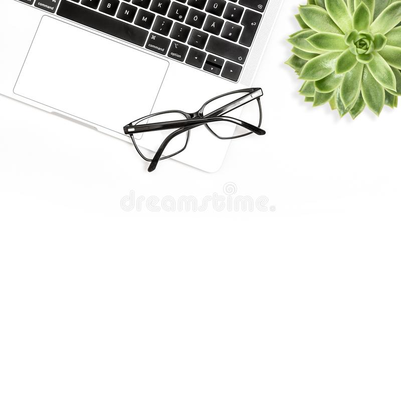 Квартира рабочего места офиса предпосылки ноутбука суккулентная белая кладет социальные средства массовой информации стоковое изображение rf