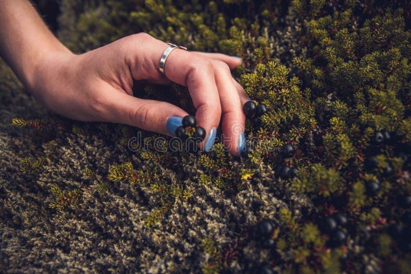 Кинематографический взгляд женщины thoughtfull в депрессии касаясь каменному мху в природе и обменивая энергию эмоции стоковые фото