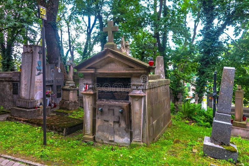 Кладбище 11 Львова Lychakiv стоковое фото rf
