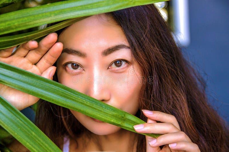 Красивая женщина прячет за листьями ладони Восточная забота красоты и кожи стоковые фото