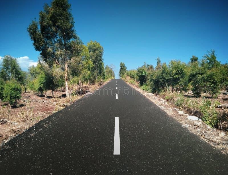 красивейшая дорога стоковая фотография