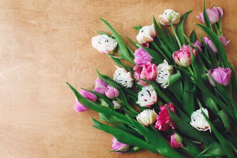 Красивые двойные тюльпаны пиона плоско кладут на деревянный стол, космос для текста Красочный пинк и пурпурные тюльпаны мать s дн стоковое фото rf