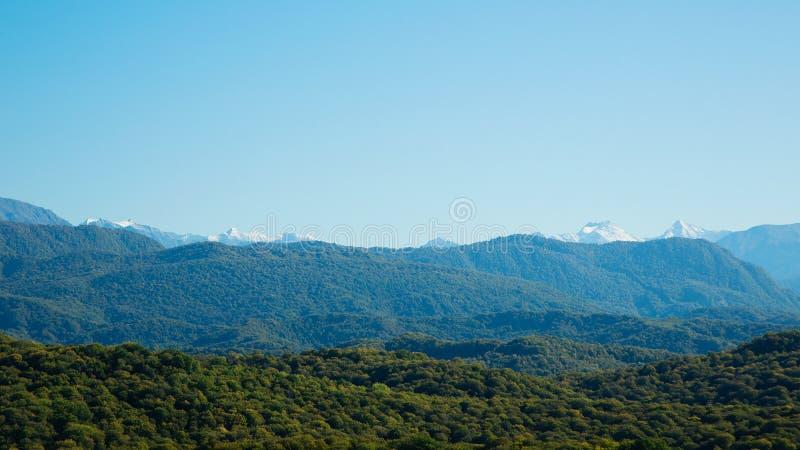 Красивые снег-покрытые горы и лес стоковое изображение rf