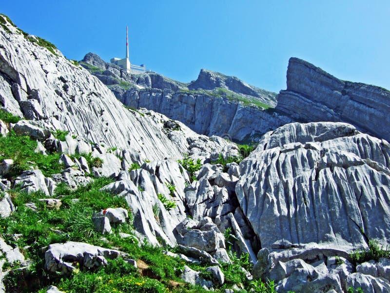 Красивый и доминантный высокогорный пик Säntis в горной цепи Alpstein стоковые изображения