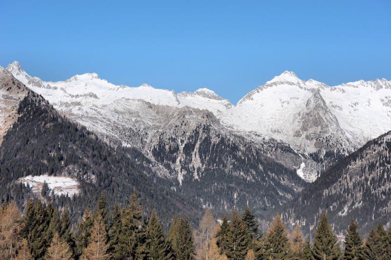 Красивый ландшафт горы - Trentino, доломиты, Италия, Европа стоковые фото