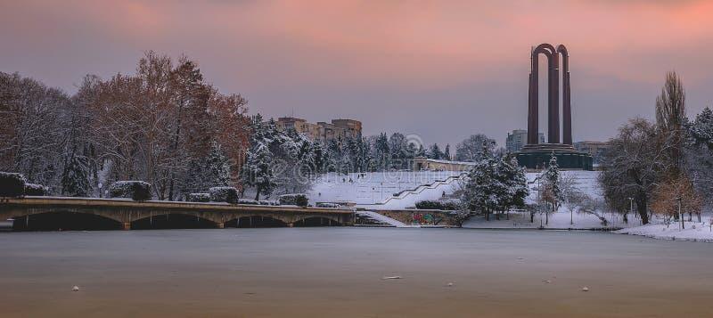 Красивый ландшафт зимы захода солнца от Румынии стоковое изображение rf