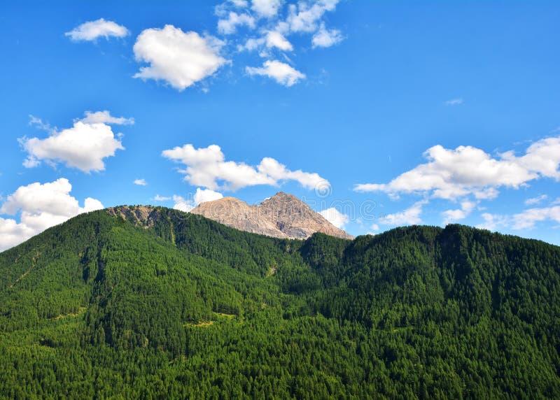 Красивый ландшафт лета в горах Альп стоковое фото