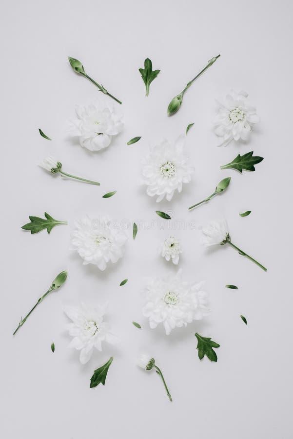 Красивый цветочный узор сделанный из белых флористических, зеленых листьев, ветвей на белой предпосылке Плоское положение, взгляд стоковые фотографии rf