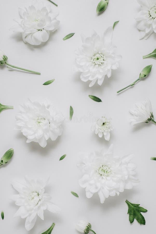 Красивый цветочный узор сделанный из белых флористических, зеленых листьев, ветвей на белой предпосылке Плоское положение, взгляд стоковое изображение