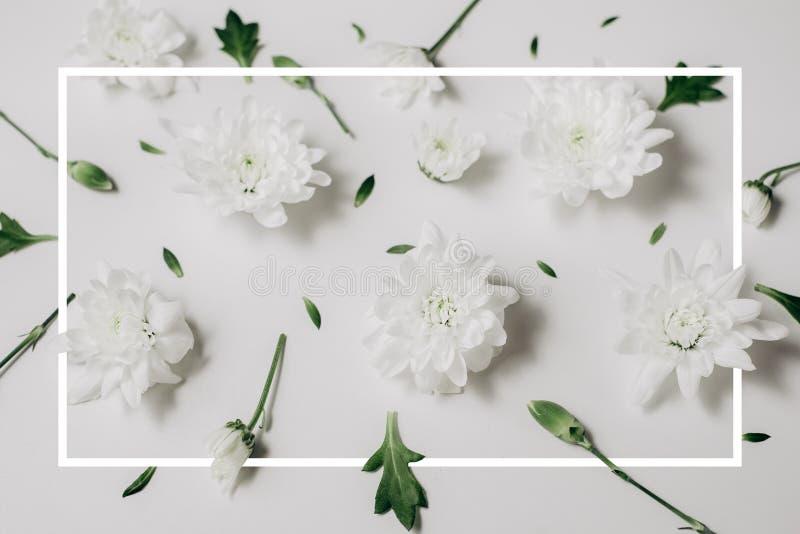 Красивый цветочный узор сделанный из белых флористических, зеленых листьев, ветвей на белой предпосылке с вычерченной рамкой Плос стоковые фотографии rf