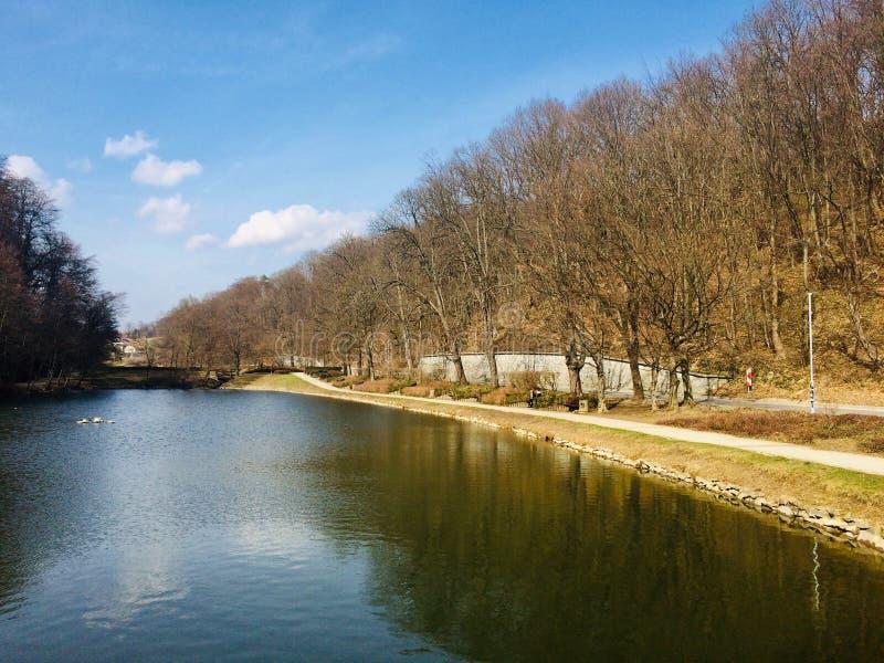 Красивый & x22; Park& x22 Mestni; в Мариборе, Словения стоковая фотография rf
