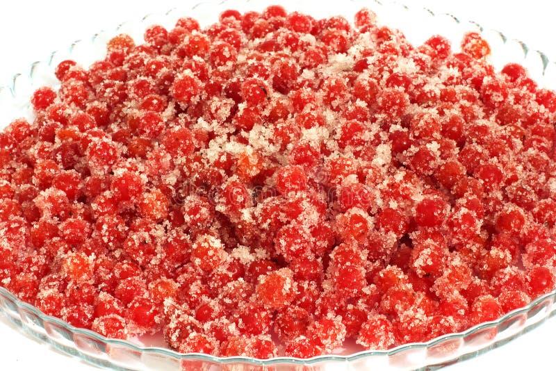 Красная калина на плите стекла Калина в сахаре стоковые изображения rf