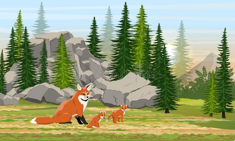 Красная лиса и новички в луге перед большими камнями и елевым лесом иллюстрация штока