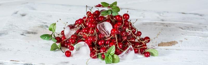 Красная смородина с льдом и зелеными листьями на белой деревянной предпосылке натюрморт еды Кубы льда с ягодами стоковые фотографии rf