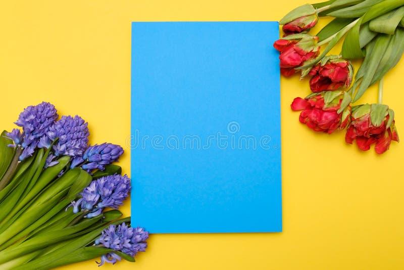 Красные тюльпаны и голубые цветки гиацинта как присутствующая карта на покрашенной предпосылке с copyspace стоковые изображения rf