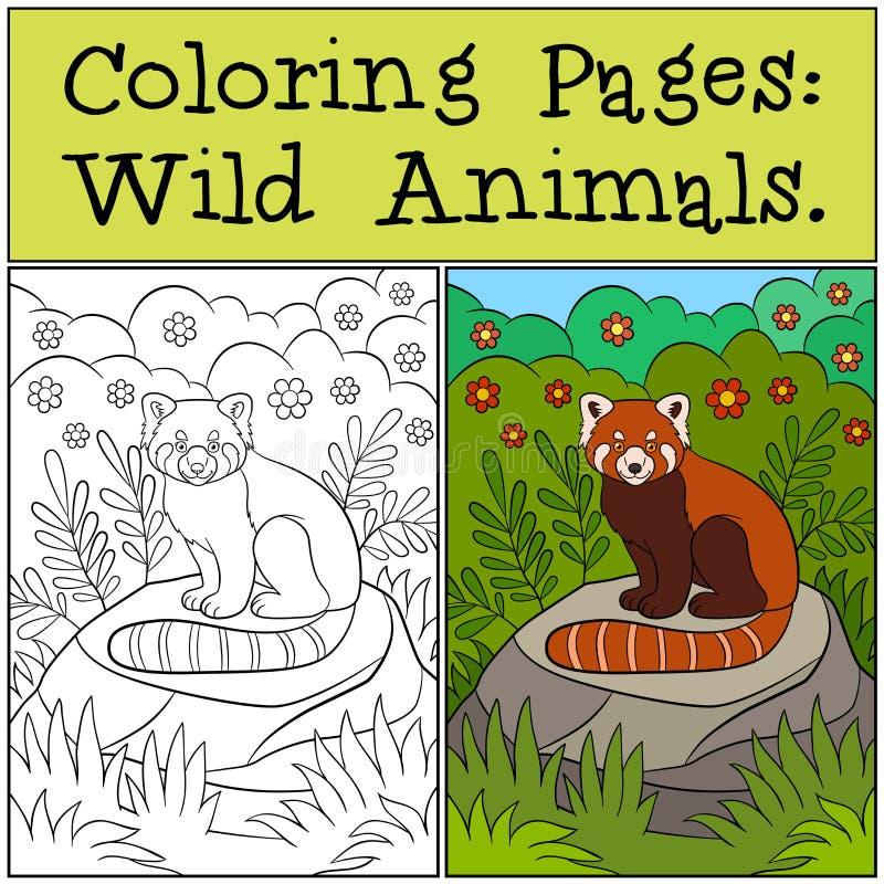 Крася страницы: Немногое панда лечения красная сидит на камне иллюстрация штока