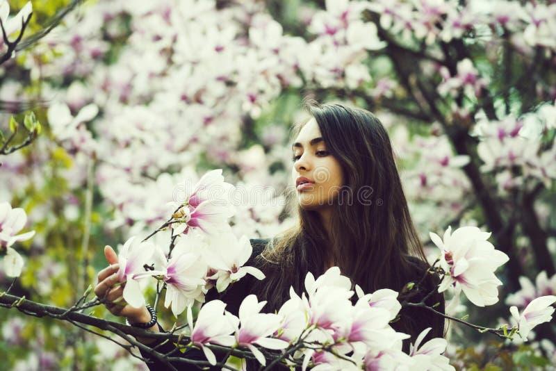 Красота и природа, молодость и свежесть, весна и лето, магнолия стоковые изображения