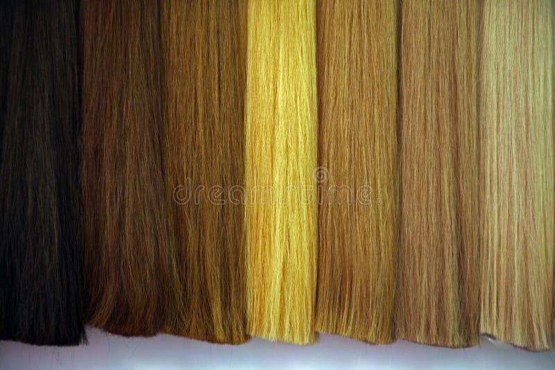 Красота & экспо 2019 волос, Загреб, 18 стоковое фото