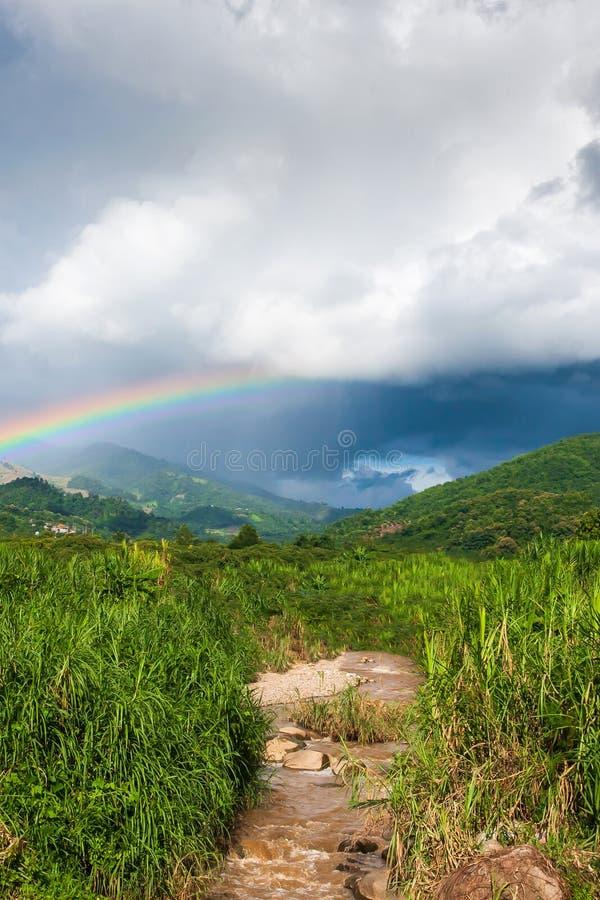 Красочная радуга над тропической долиной горы в дожде, сценарном лесе зеленого цвета ландшафта и потоке в сельской местности стоковые фото