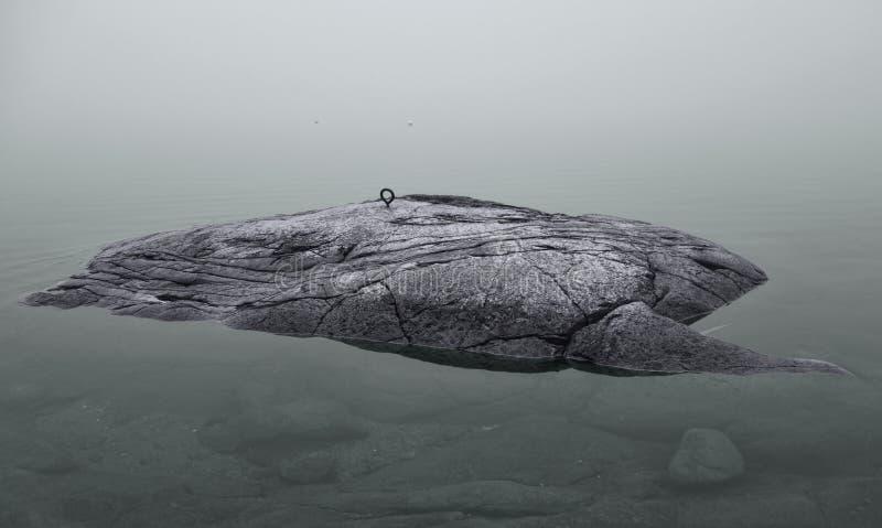 Крошечный островок на Балтийском море стоковое фото rf