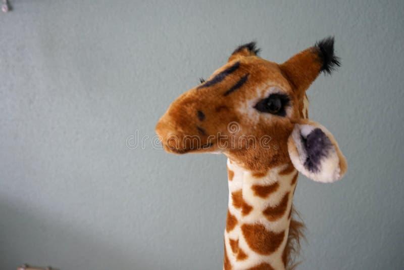 Конец жирафа плюша главный вверх по взгляду перед стеной стоковая фотография rf