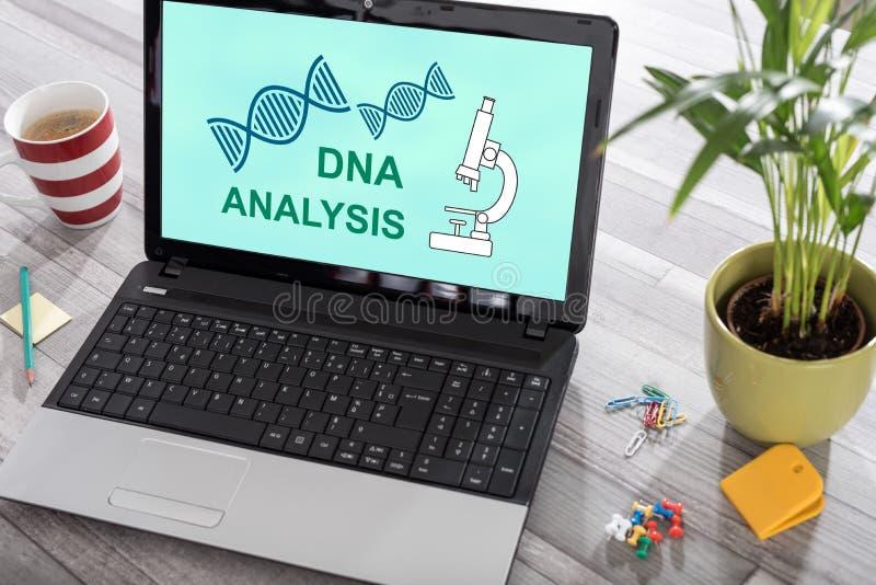 Концепция анализа ДНК на ноутбуке стоковая фотография rf
