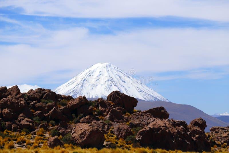 Ландшафты пустыни Atacama, Чили стоковое фото rf