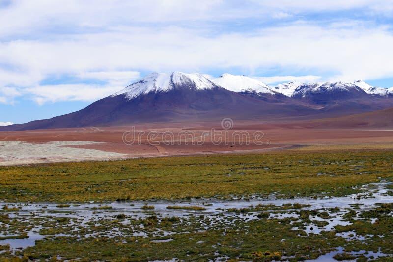Ландшафты пустыни Atacama, Чили стоковая фотография rf