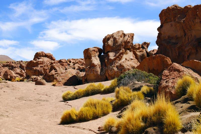 Ландшафты пустыни Atacama, Чили стоковое фото