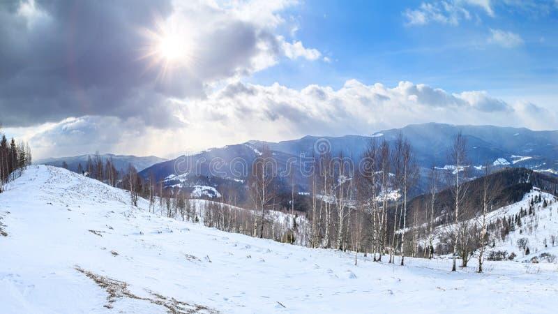 Ландшафт зимы - взгляд сверху снежной долины горы в Карпат стоковые фотографии rf