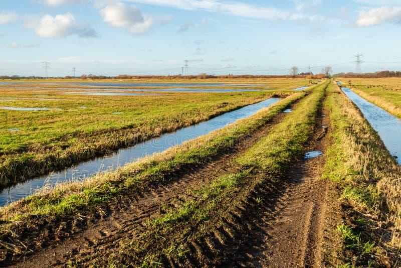 Ландшафт польдера с проселочной дорогой между 2 рвами стоковая фотография rf