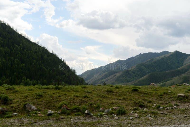 Ландшафт около реки Katun, республика горы Altai, Сибирь, Россия стоковые изображения