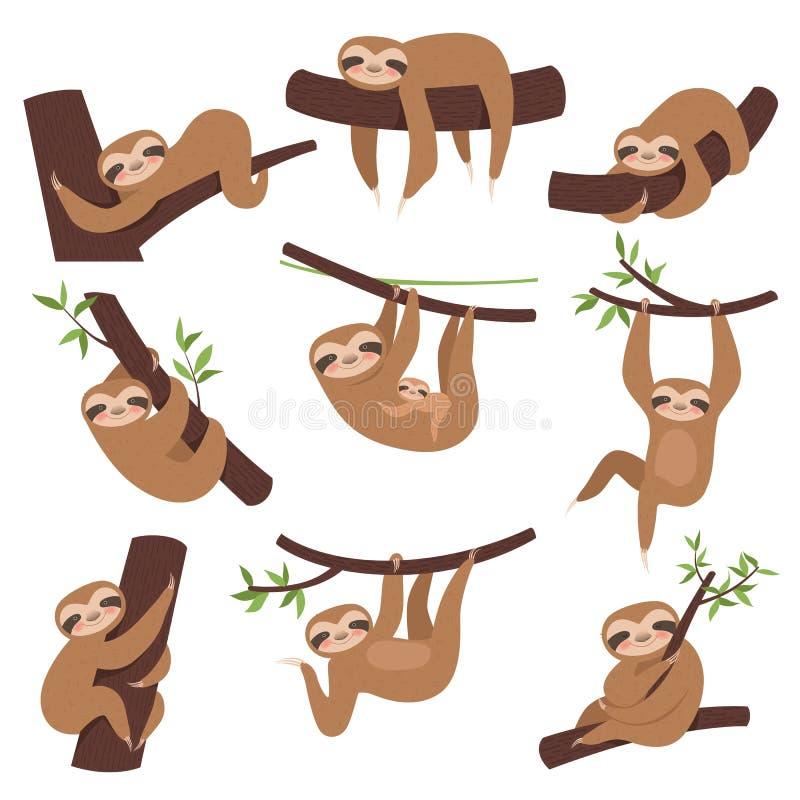 Лень на ветви Животное милого маленького ребенка сонное на ветви в зоопарке играя с мультфильмом характеров вектора смертной казн иллюстрация вектора
