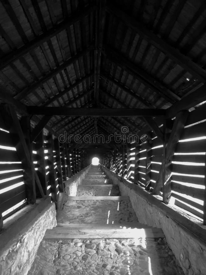 Лестницы к безграничности стоковое изображение rf