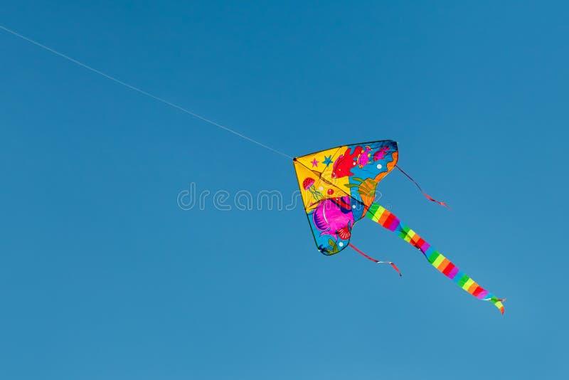 Летание змея в небе стоковое фото rf