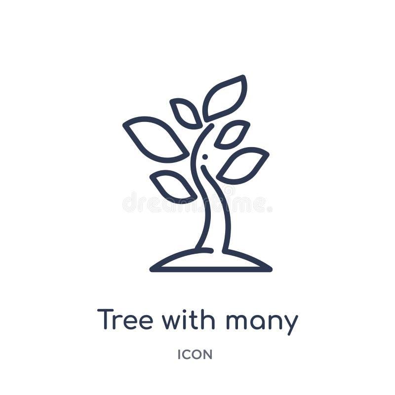 Линейное дерево со значком много листьев от собрания плана экологичности Тонкая линия дерево с вектором много листьев изолированн иллюстрация вектора