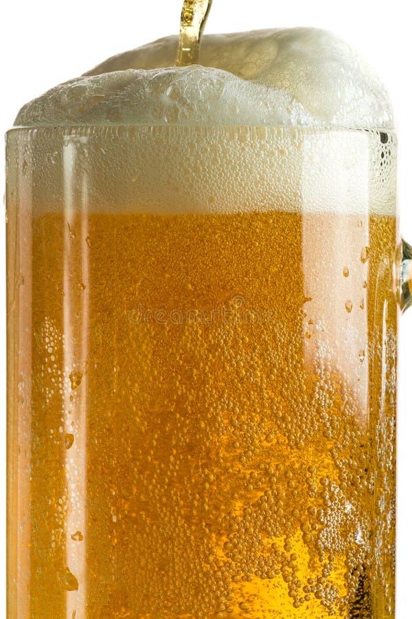 Лить светлое пиво в кружке пива, оно поворачивает вне пену и брызги стоковые изображения rf