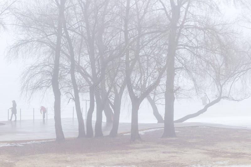 Люди на пустом пляже весны на речном береге среди деревьев туманнейше стоковые изображения