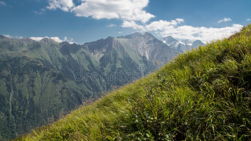 Луг в пиках холма переднего плана в предпосылке стоковые изображения rf